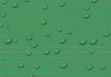 Passauer Essays zu Lobbyismus & Europäisierung